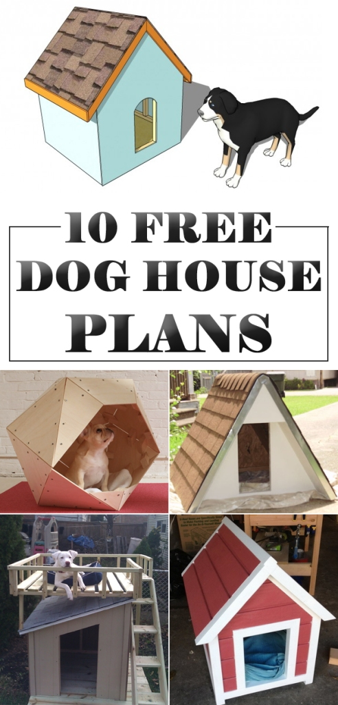 10-Amazing-DIY-Dog-Houses-With-Free-Plans