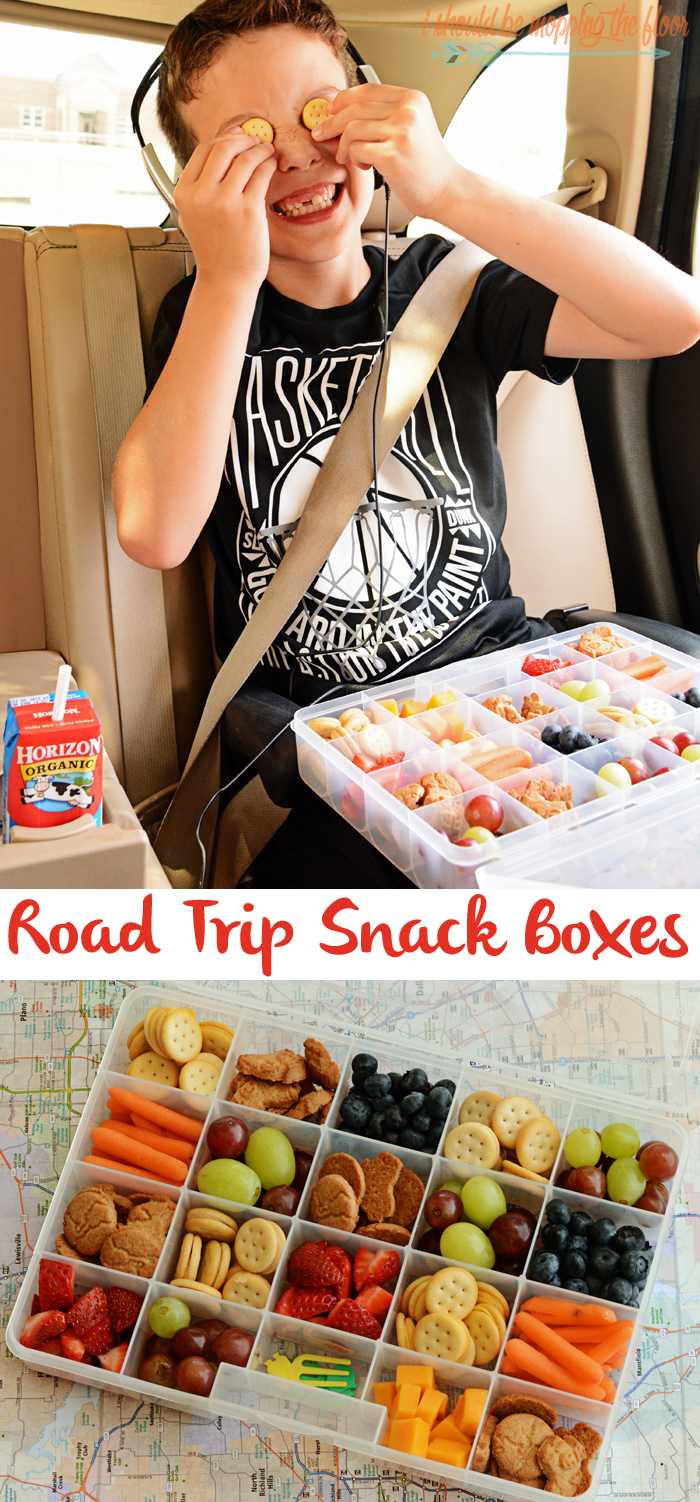 Travel Snack Boxes | Do It Daily