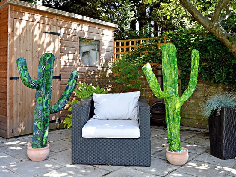 2-cacti-patio