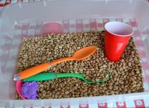 Beans-001-300x217