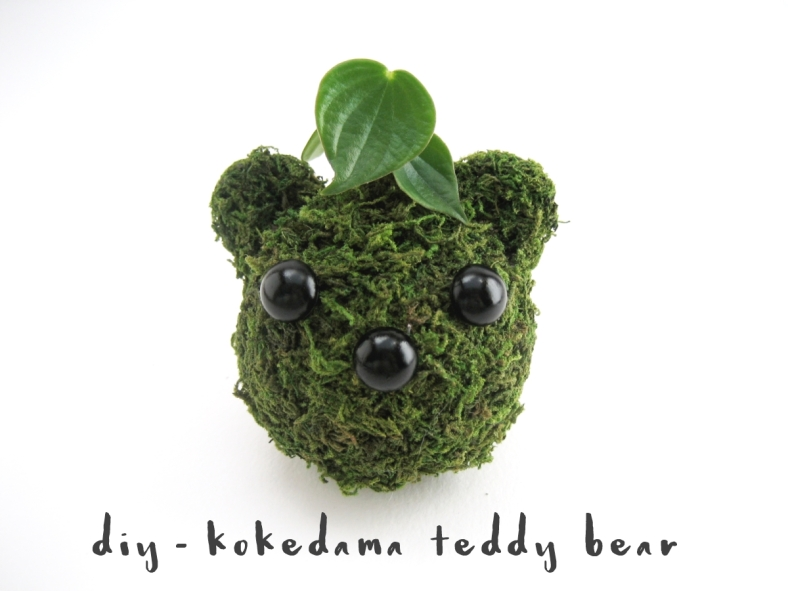 diy-kokedama-teddy-bear-adorablest